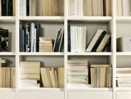 dettaglio dei ripiani libreria